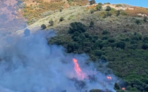 Ajaccio : un incendie dans le secteur de la Confina