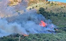 Ajaccio : six hectares brûlés à la Confina