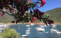 La météo du vendredi 23 juillet 2021 en Corse