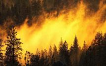 Incendies : 1,5 ha détruits à Linguizzetta