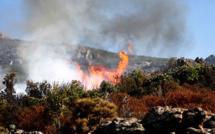Incendies : Encore une dizaine de foyers en Haute-Corse