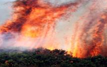 Nouveaux foyers d'incendie en Haute-Corse