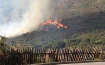 Appietto : Le feu a menacé le village