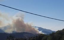 Alata : 15 hectares détruits  par le feu au col de Carbinicca
