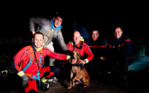 Ajaccio : les pompiers sauvent le chien tombé dans le port