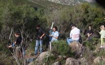 Tir à l'arc en campagne : Succès du souvenir Ernest-Ludwig à Calenzana