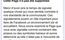 """""""Le corsicophobe"""" de Facebook: Histoire d'une banalisation ordinaire de la xénophobie"""