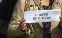 Bastia : Les greffiers en colère se rassemblent au palais de justice