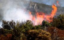 Pino : L'incendie se poursuit. 2 500 m2 détruits dans le Lancone