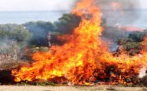 80 ha détruits à Ghisonaccia : La pression incendiaire s'accentue