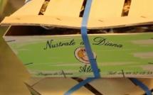 Huîtres et moules de l'étang de Diana : Levée de l'interdiction de commercialisation