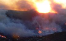 Un violent incendie se développe à Speloncato : 30 ha déjà parcourus par les flammes