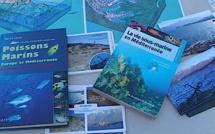 Bastia avant Ajaccio : 45 ateliers pour la 23ème édition de la Mer en fête